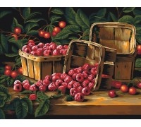 "RADUGA Картина по номерам ""Ароматная малина"" 40х50 см (GX22482)"