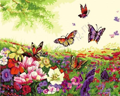 G271 Бабочки на лугу