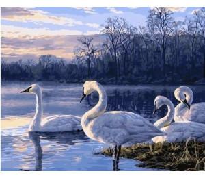 "Картина по номерам ""Лебеди на озере"" 40х50 см (GX21200)"