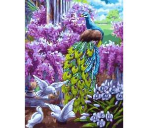 "RADUGA Картина по номерам ""Павлин в саду"" 40х50 см (GX21335)"