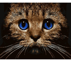 GX21674 Кошачий вгляд