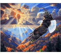 """Картина по номерам """"Орёл в облаках"""" 40х50 см (GX21842)"""