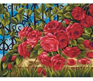 "Paintboy Картина по номерам ""Кустовая роза у забора""  40х50 см (GX22413)"