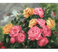 Картина по номерам «Чайные розы»