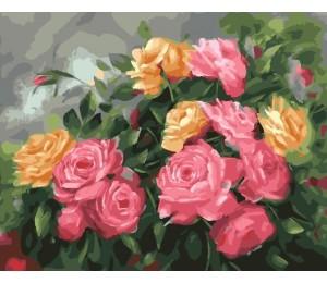 "RADUGA Картина по номерам ""Чайные розы"" 40х50 см (GX25590)"