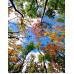 """Paintboy Картина по номерам """"Разноцветные деревья""""  40х50 см (GX8818)"""