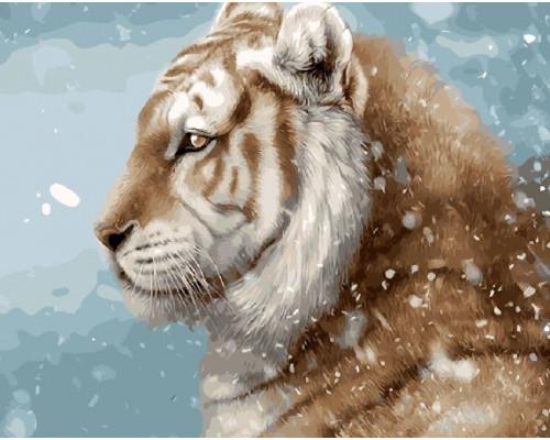 GX9641 Красавец тигр