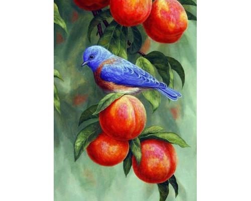RDG-0443 Птичка на ветке с персиками