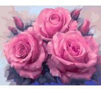RDG-0616 Нежные розы