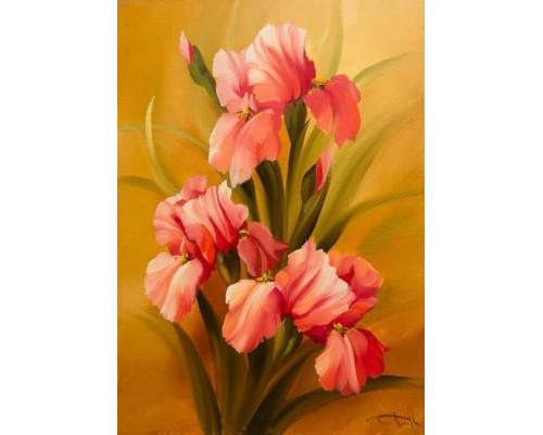 RDG-0645 Розовые ирисы