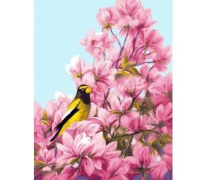 "RADUGA Картина по номерам ""Птица на розовой ветке""  40х50 см (RDG-1483)"