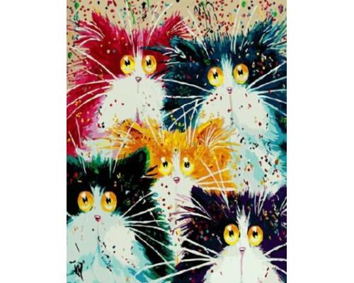 RDG-2391 Разноцветные коты