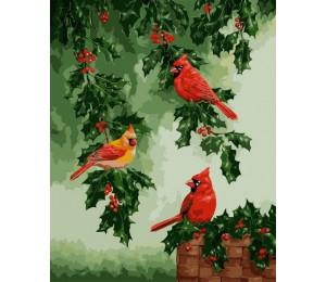 """Colibri Картина по номерам """"Красные кардиналы"""" 40х50 см (VA-0197)"""