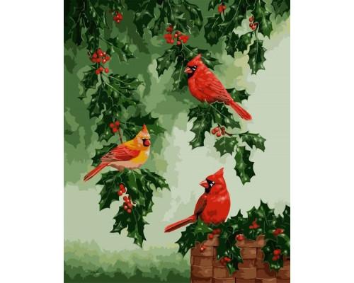 Картина по номерам «Красные кардиналы»