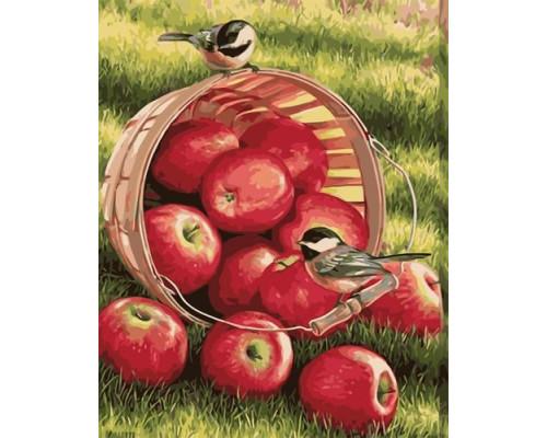 Спелые яблочки