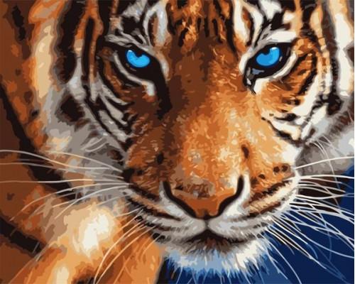 Голубоглазый тигр