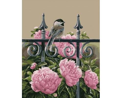 Картина по номерам 40х50 см Птичка на заборе