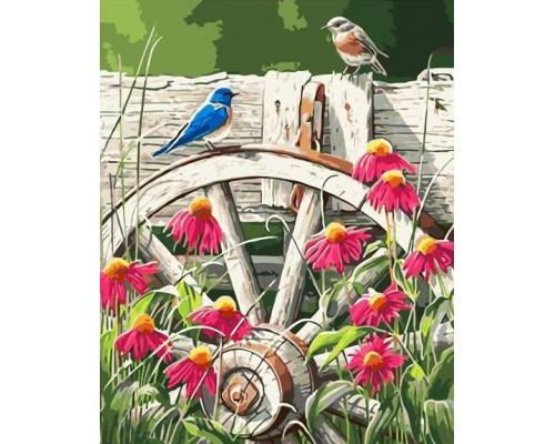 Полевые птицы
