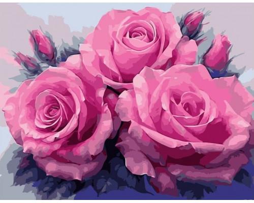 Картина по номерам 40х50 см Цветущие розы