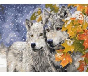 Картина по номерам 40х50 см Два волка VA-1642